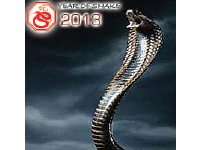 Ежегодный гороскоп 2013 год Змеи
